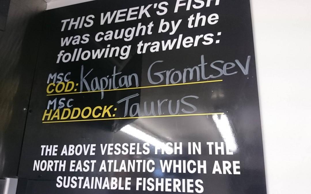 peckish-fish-trawler-catch-oftheweek